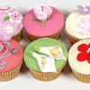 Thumb_9_floral-cupcakes-lesson